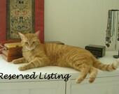 Reserved Listing for Melinda Cartwright