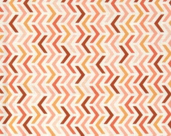 Peach Ripple Stripes from Michael Miller's Les Amis Collection
