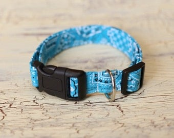 1 Inch Adjustable Dog Collar - Medium/Large -