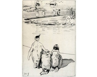 Vintage Print - The Penguin Pond in Regents Park Zoo, London England -  Etching by A Hugh Fisher, Signed - Animal Artwork in Black and White