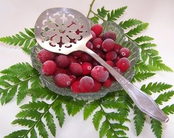TOMATO Server, CRANBERRY Server, Tomatoes, Cranberries, Holiday Canape Server, Vintage Silver Plated, Jamestown, H & E, 1916, Under 25