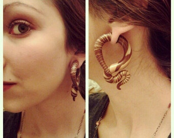 Forestry Gauged Earrings