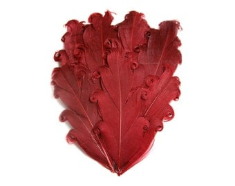 Nagorie Feather Pad - Set of 2 -  Cranberry