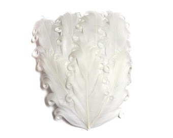 Nagorie Feather Pad - Set of 2 -  White