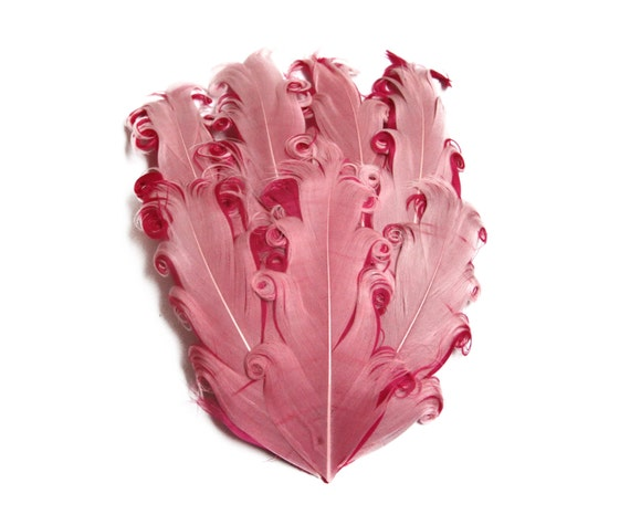 Nagorie Feather Pad - Set of 2 -  pink and Hot pink