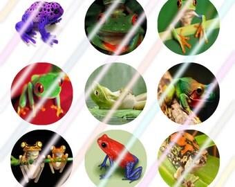 """Frog Love 1"""" Bottle Cap Image 4x6 Digital Collage Sheet Instant Download"""