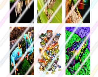 """Frog (#2) 1"""" x 2"""" Domino Images 4x6 Digital Collage Sheet  Instant Download"""