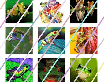 Frogs 1 inch Square Tile Images 4x6 Digital Collage Sheet Instant Download