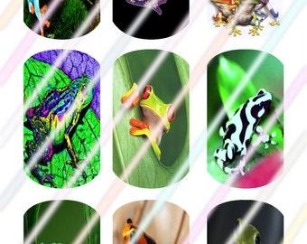 Frog (#2) Dog Tags Images 4x6 Digital Collage Sheet Instant Download
