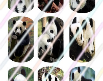 Panda Dog Tags Images 4x6 Digital Collage Sheet Instant Download