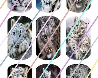 Snow Cat Dog Tags Images 4x6 Digital Collage Sheet Instant Download