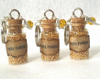 Harry Potter Felix Felicis (Liquid Luck) Potion Keyrings