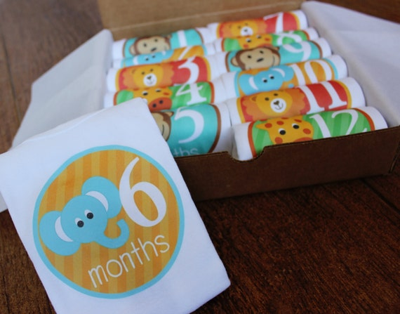 Set of 12 Month 2 Month Baby Milestone Zoo Animals Perfect Baby Shower Gift, Comes with Gift Box, Paper Wrap and Gift Tag