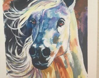 Horse - Giclee'