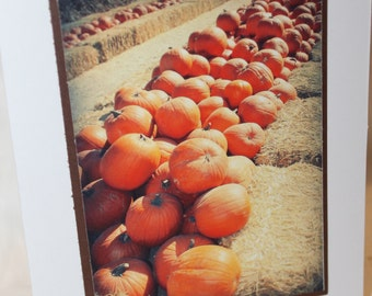 Pumpkin photo card, Autumn, Pumpkin patch photograph