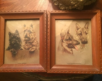 Pair od framed dog prints