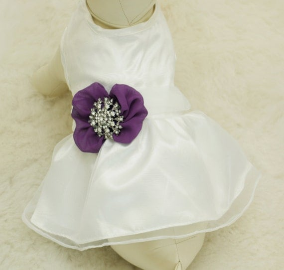 Wedding Gifts For Dog Lovers: Purple Dog Dress Pet Wedding Accessorydog Clothing By