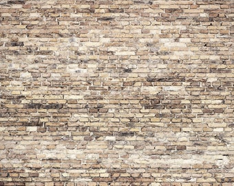 Vinyl Photography  Backdrop Photo Prop - Cafe Brick