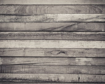 Vinyl Photography  Backdrop Photo Prop - Willow Wood