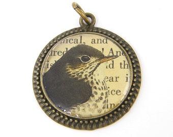 Bird Pendant - Antique Brass Round Bird Charm Black Bird Old Book Collage Resin Nature Jewelry