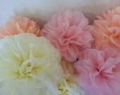 Tissue Paper Pom Pom - Set of 9 - Weddings decor//Blush colours//Receptions//Aniversary//Parties decor//Nursery//Baby Shower
