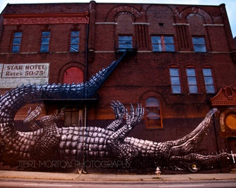 Alligator Wall + Street Photography + Mural + 5x7 print