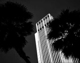 L.A. Nights: Print Framed and Unframed