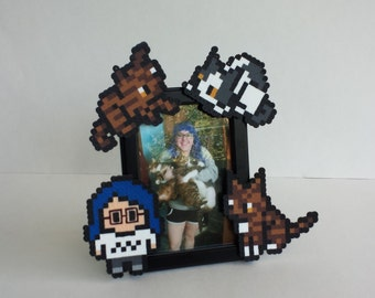 Custom Picture Frame - Crazy Cat Lady Edition