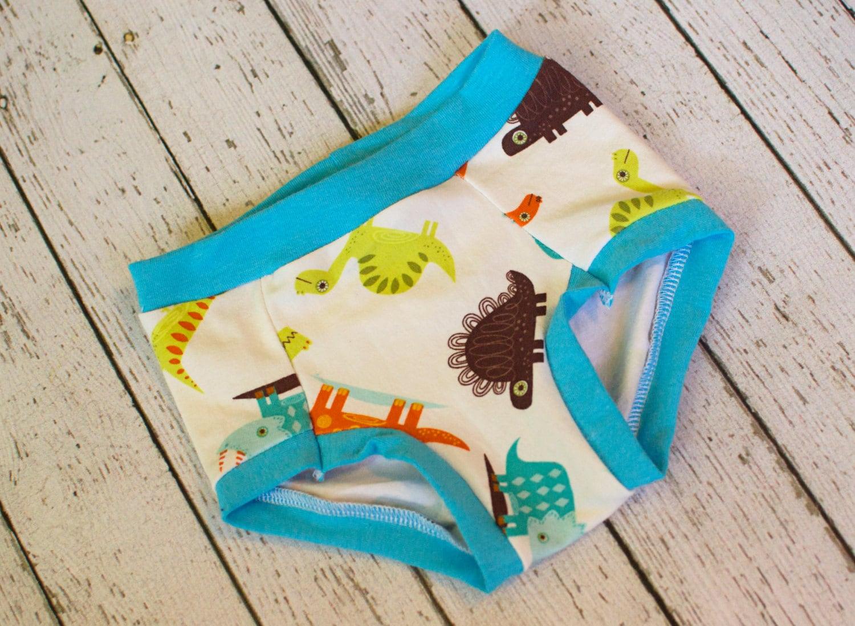 Dinosaur Underwear Girls Underwear Toddler Underwear Boys