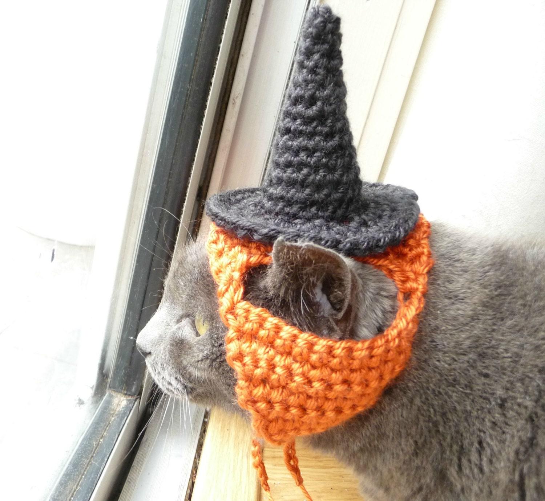 Dog Halloween Costume CROCHET PATTERN Dog Costume Witch Costume ...