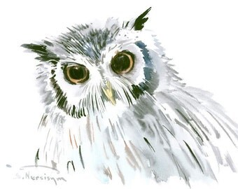 Northern White FaceD Owl art, original watercolor painting, 12 x 9 in, owl wall art, owls