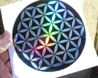2 Colour Rainbow silver Flower of Love
