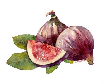 Fruit Art - Painting of Figs Still Life Food Print Watercolor Painting Fine Art Home Decor Realistic Kitchen art