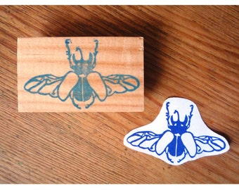 Rubber stamp beetle flight