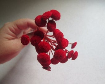 Red Floral Buttons for DIY crafts, Wedding Decor, 30 dried flowers