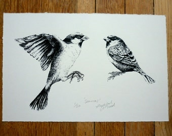 Sparras - limited edition sparrows screenprint