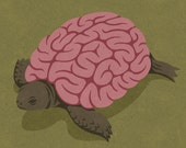 Tortoise brain, signed limited edition print