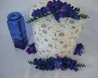 4 Blue Island Dendrobium Orchid Trailing Stems