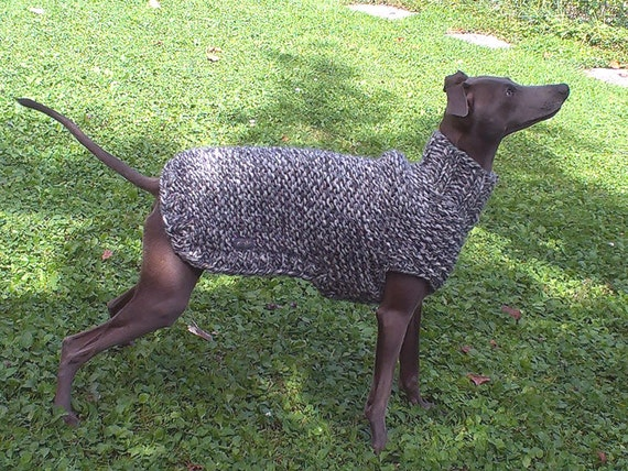Knitting Patterns For Greyhound Sweaters : Italian Greyhound Knit Sweater / Italian Greyhound by majStyle