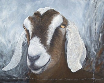Nubian Goat, matted giclée print from original painting by Tracy Anderson