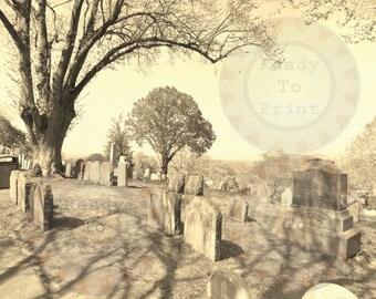 Old Cemetery Fine Art Digital Photo Goth Halloween Decor Plymouth, MA
