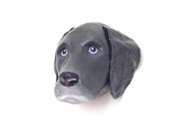 SALE...Grey weimaraner dog portrait / wall mount, art sculpture, faux taxidermy