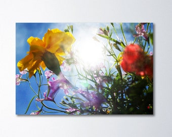 Large Wall Art, Oversized Art, Colorful Floral Art, Dreamy Fine art Photography, Large Canvas Gallery Wrap, Flowers, Sunshine