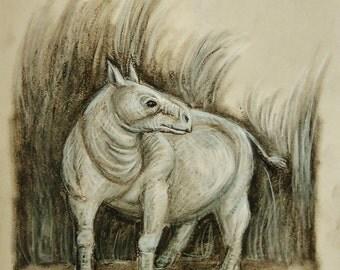 Prehistoric Animal Study in Charcoal--Trigonias osborni