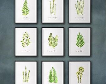 Fern watercolor painting, Botanical print set, Set of 9, Spring decor, Green Leaves print, Apartment decor, Leaf art, Garden print