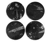Orthoceras Coasters - Set of 4 (COA-FO-4A001)