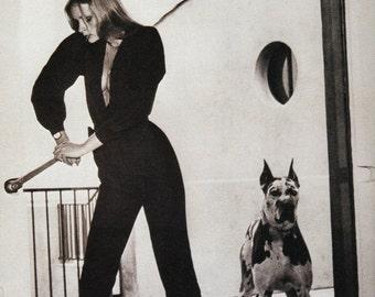 50% off ESTATE SALE Vintage Vogue Poster Print, Canine Couture Item 5054, 1970s Harlequin Great Dane Dog Picture Fashion