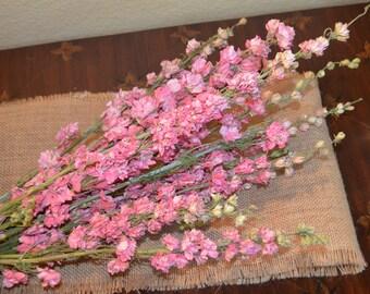 Dried Larkspur, Pink Larkspur, Dried Flowers