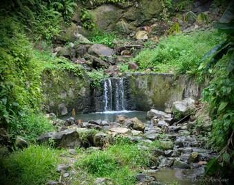 Nature's Waterfall (8x10)