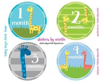 Month by Month Baby Boy Stickers - Giraffe